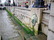Thames Lions