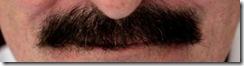 Lord Winston moustache