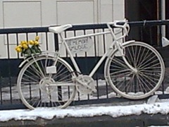 White Bike-4
