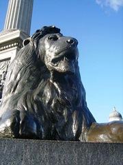 450px-Trafalgar_square_lion