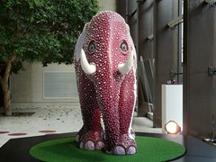 Coutts Elephant 2