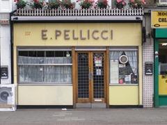 E_Pellicci