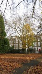 Lonsdale Square-3