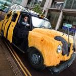 Backward Cabbie